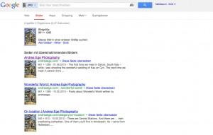 google_bildersuche_screenshot