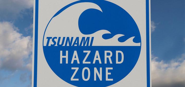 DigitalerTsunami