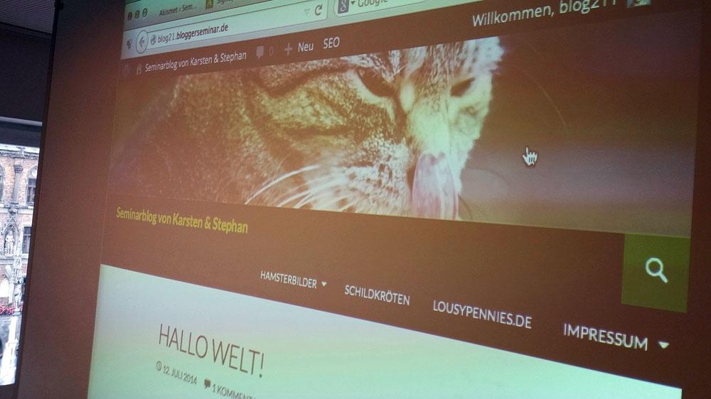 Bloggerseminar-Katze
